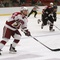 Snapshot: men's ice hockey