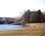 Cambridge, snow, weather