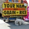 Your Name on a Grain of Rice