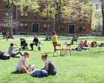 Studying in the Sunshine