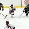 D'oench ice hockey
