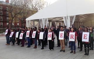 The Diversity Report Demonstration