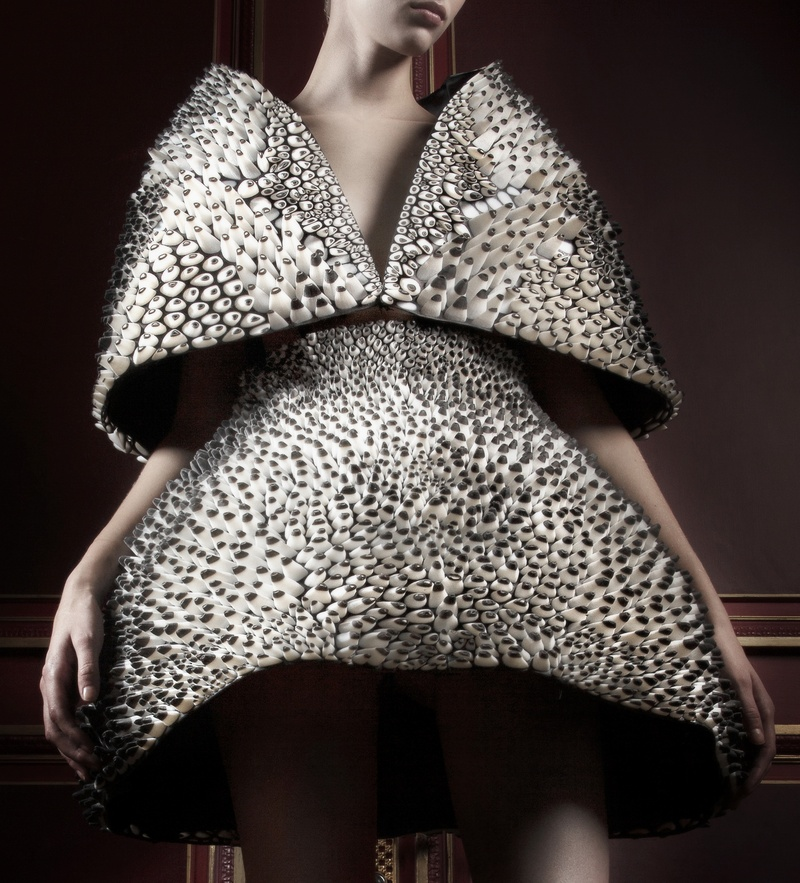 Anthazoa cape and skirt, Voltage Collection, van Herpen